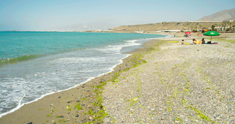 Playa de Balanegra