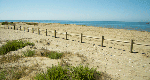 Playa Punta Entinas
