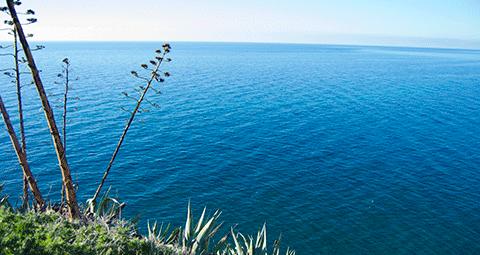 Playa El Ruso